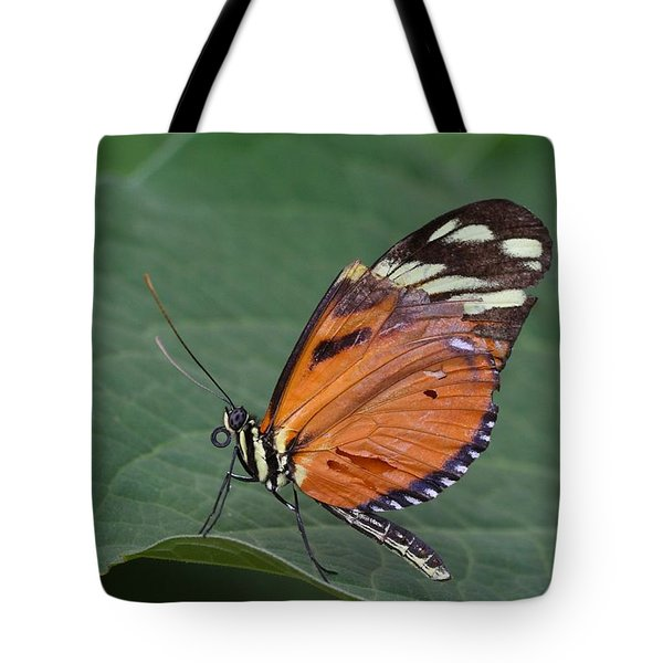 Tote Bag featuring the photograph Broken Wing by Ruth Jolly