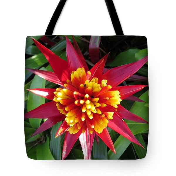 Bromelaid Tote Bag by Zina Stromberg