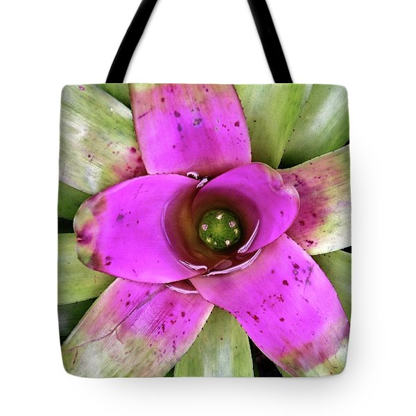 Tote Bag featuring the photograph Bromeliad by Allen Beatty
