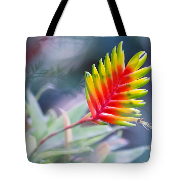 Bromeliad Beauty Tote Bag