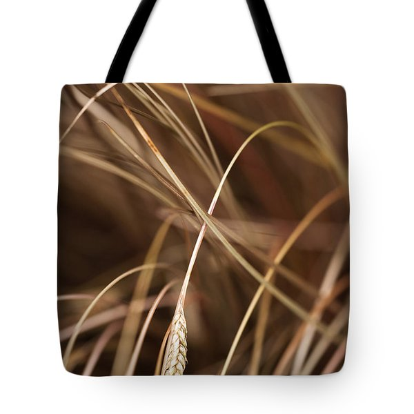 Bronze Tote Bag by Anne Gilbert