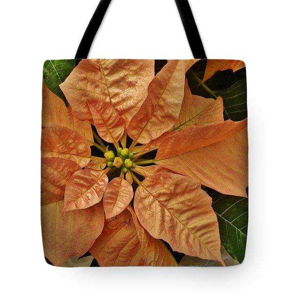 Bronze Poinsettia 3 Tote Bag by VLee Watson