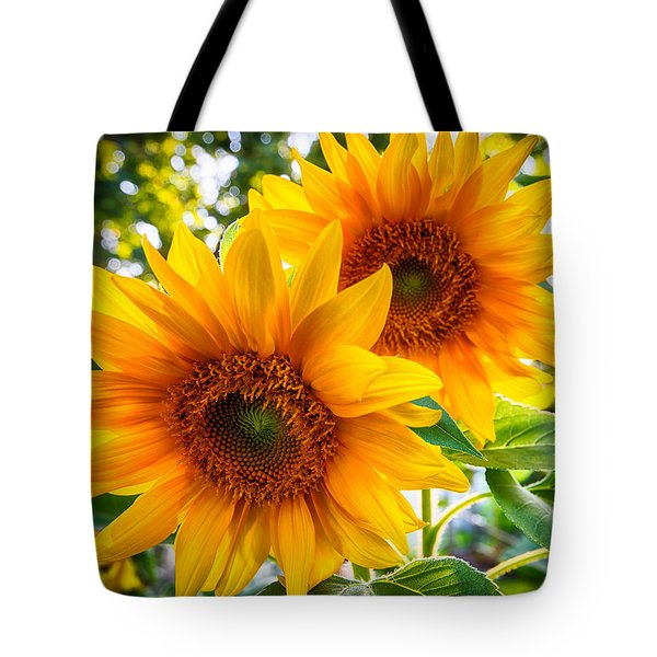 Tote Bag featuring the photograph Brothers by Phil Abrams