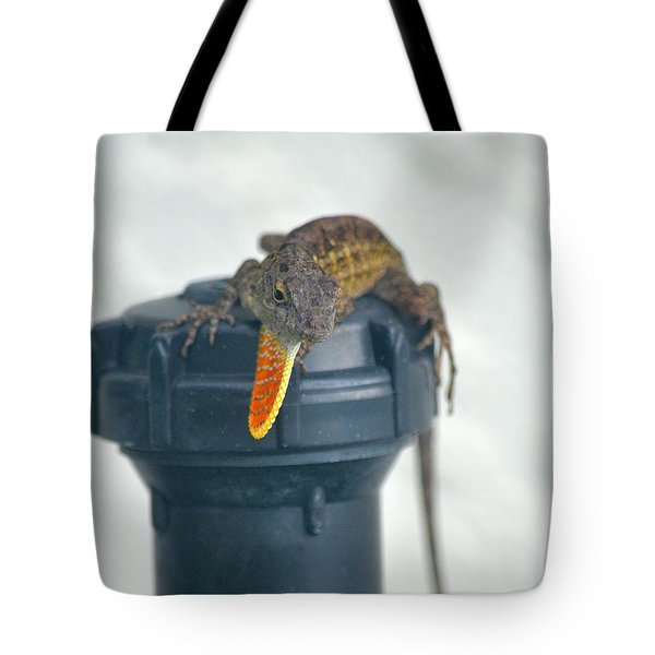 Brown Anole With Dewlap Tote Bag by Richard Bryce and Family