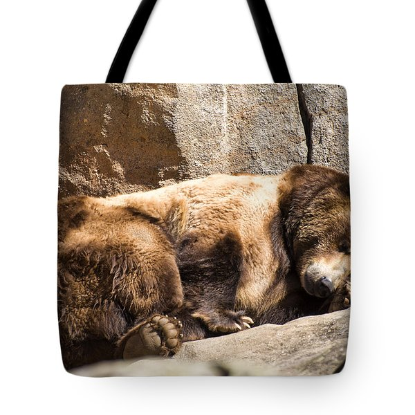 Brown Bear Asleep Again Tote Bag by Chris Flees