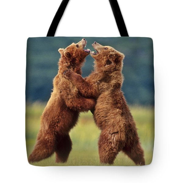 Brown Bears Sparring Tote Bag by Frans Lanting MINT Images