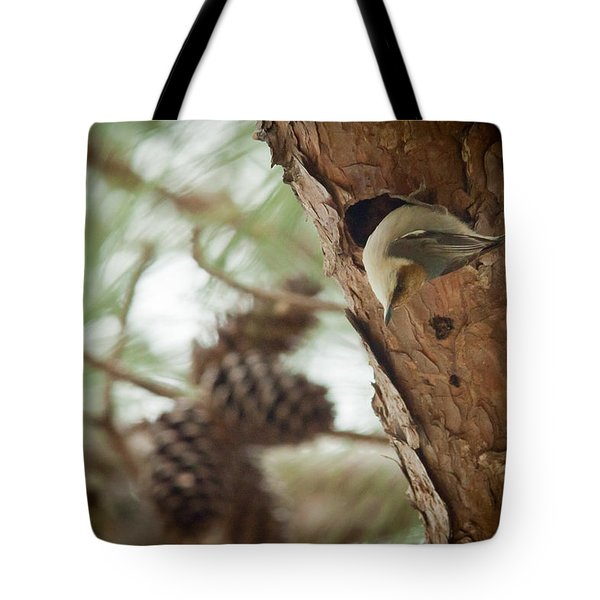 Brown Headed Nuthatch Tote Bag by Linda Unger