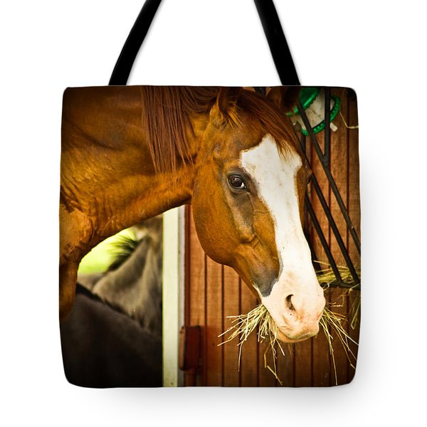 Brown Horse Tote Bag by Joann Copeland-Paul