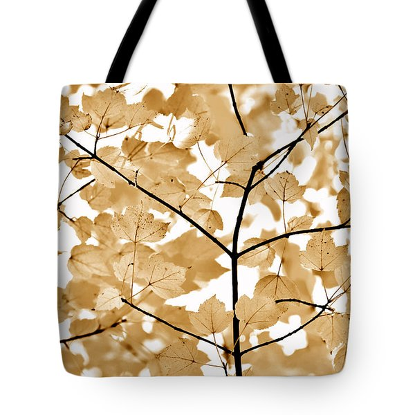 Brown Leaves Melody Tote Bag by Jennie Marie Schell