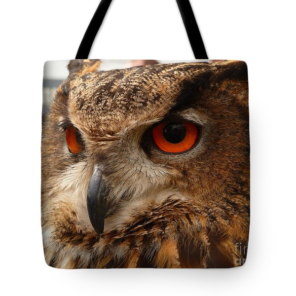 Tote Bag featuring the photograph Brown Owl by Vicki Spindler