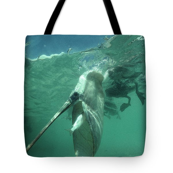 Brown Pelican Catching Mullet Tote Bag by Tui De Roy