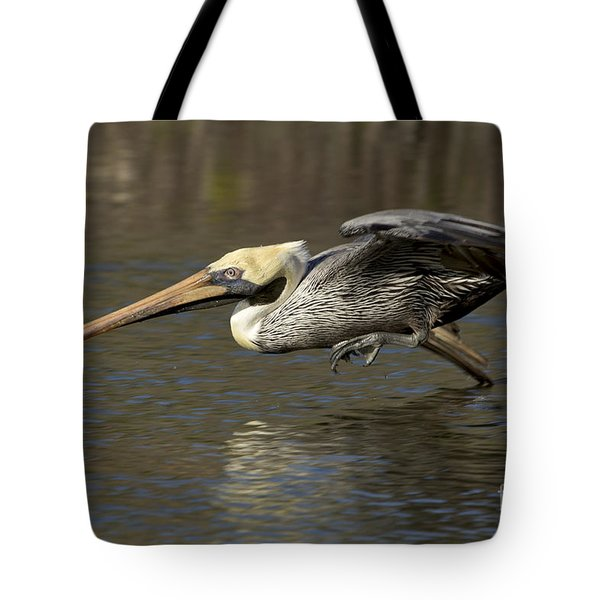 Tote Bag featuring the photograph Brown Pelican Fishing Photo by Meg Rousher