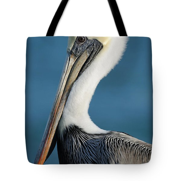 Brown Pelican Portrait Tote Bag