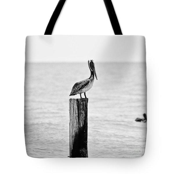 Brown Pelican Tote Bag by Scott Pellegrin