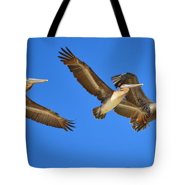 Tote Bag featuring the photograph Brown Pelicans In Flight by Debra Martz