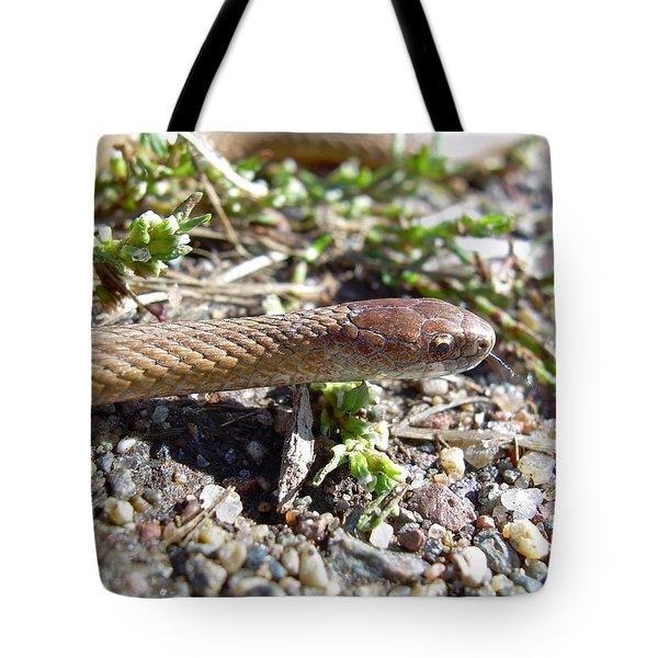 Brown Snake Tote Bag