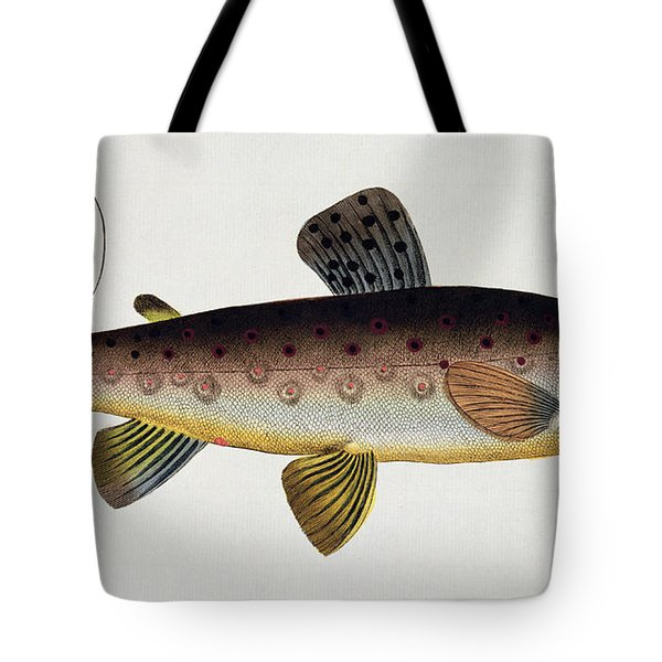 Brown Trout Tote Bag by Andreas Ludwig Kruger