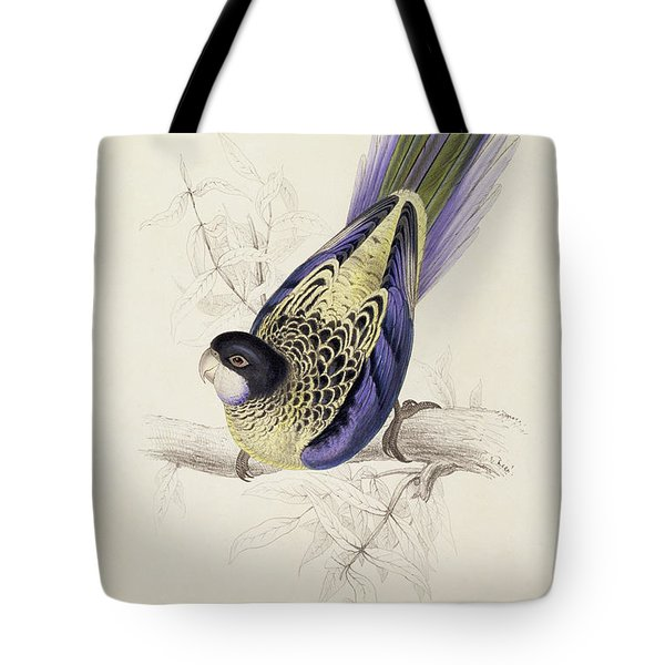 Browns Parakeet Tote Bag by Edward Lear