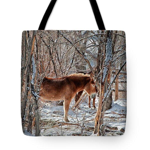 Brrrrrrr Tote Bag by Cat Connor