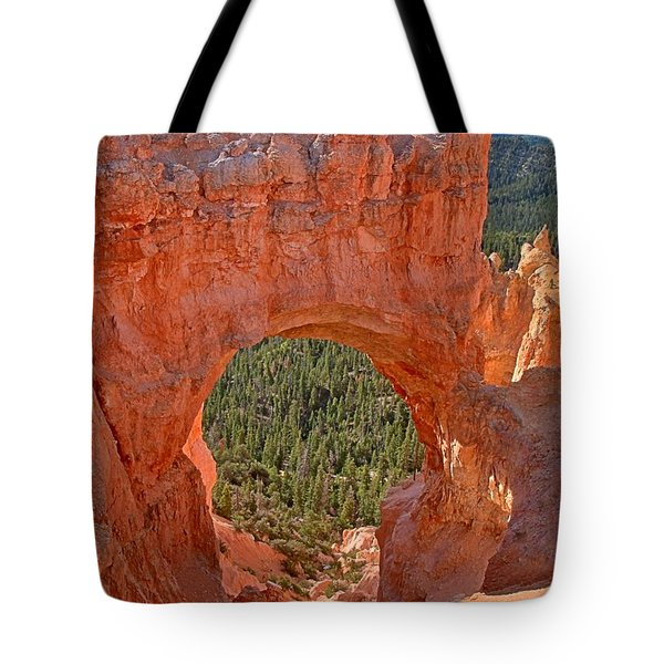 Bryce Pink Arch Tote Bag