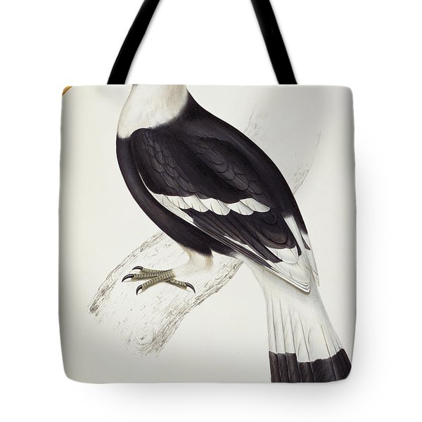 Great Hornbill Tote Bag by John Gould