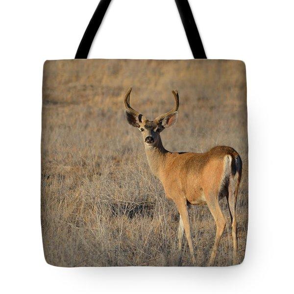 Buck 4 Tote Bag