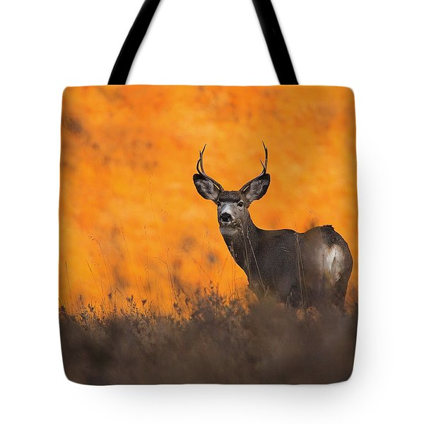 Tote Bag featuring the photograph Buck Pose by Kadek Susanto