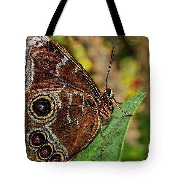 Tote Bag featuring the photograph Blue Morpho Butterfly by Olga Hamilton