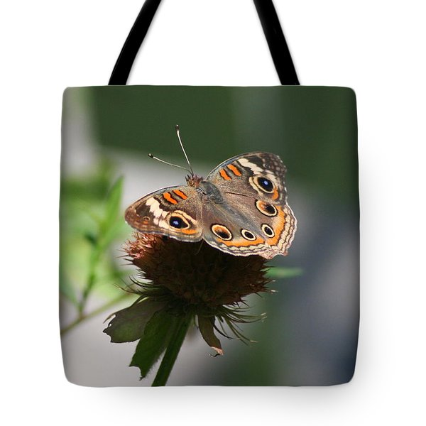 Tote Bag featuring the photograph Buckeye by Karen Silvestri