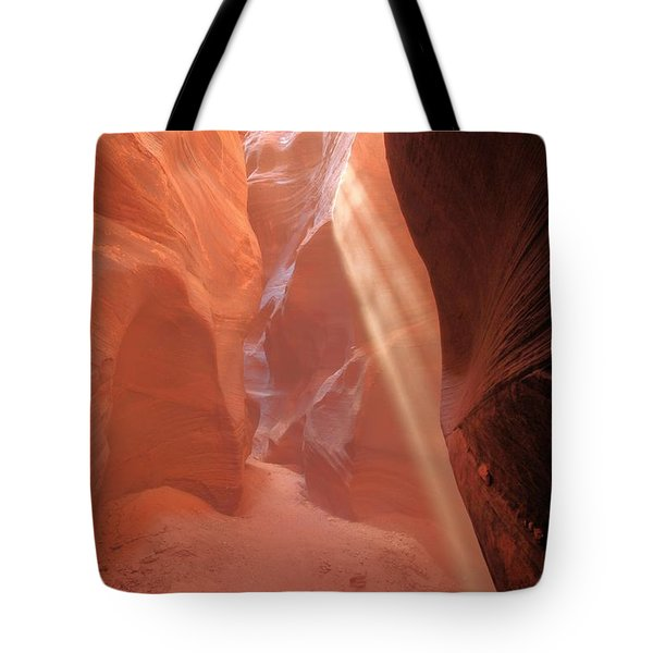 Buckskin Beam Tote Bag