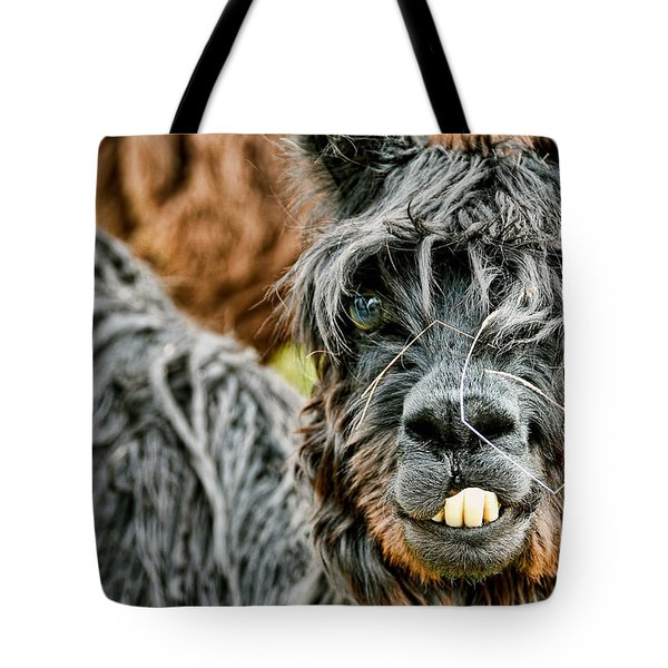Tote Bag featuring the photograph Bucky The Alpaca by David Lawson