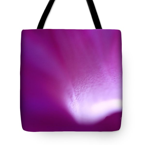 Buddhas Light  Tote Bag