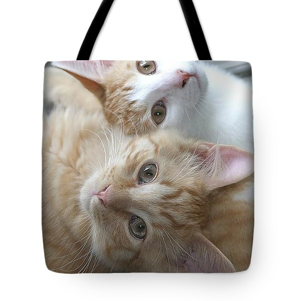 Buddies For Life Tote Bag by Living Color Photography Lorraine Lynch