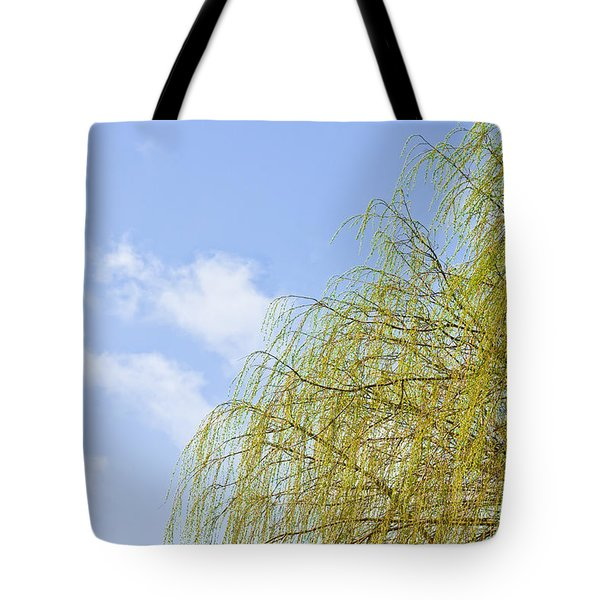 Budding Willow Tote Bag