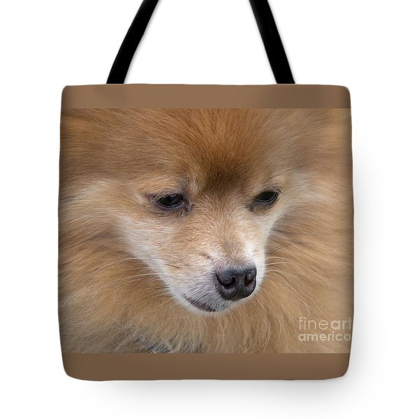 Buddy Tote Bag by Ann Horn