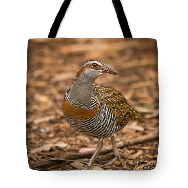 Buff-banded Rail Tote Bag