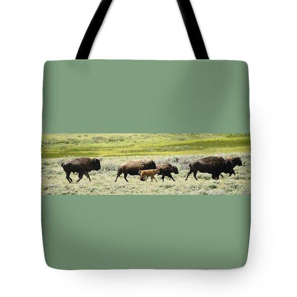 Buffalo Family Tote Bag