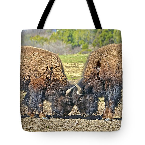 Buffaloes At Play Tote Bag