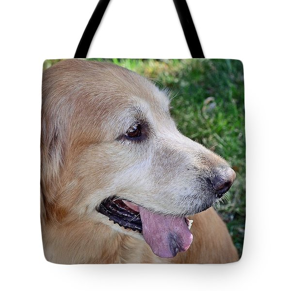 Tote Bag featuring the photograph Buffie by Lisa Phillips
