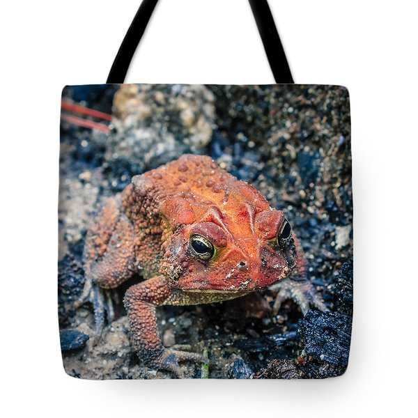 Tote Bag featuring the photograph Bufo Terrestris by Rob Sellers