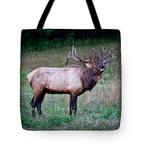 Tote Bag featuring the photograph Bugle Solo From Bull Elk by John Haldane