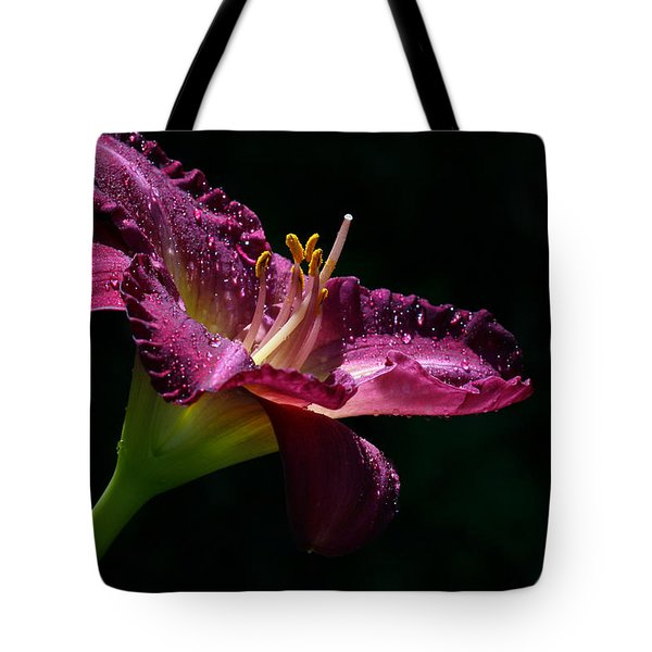 Bugler Tote Bag by Doug Norkum