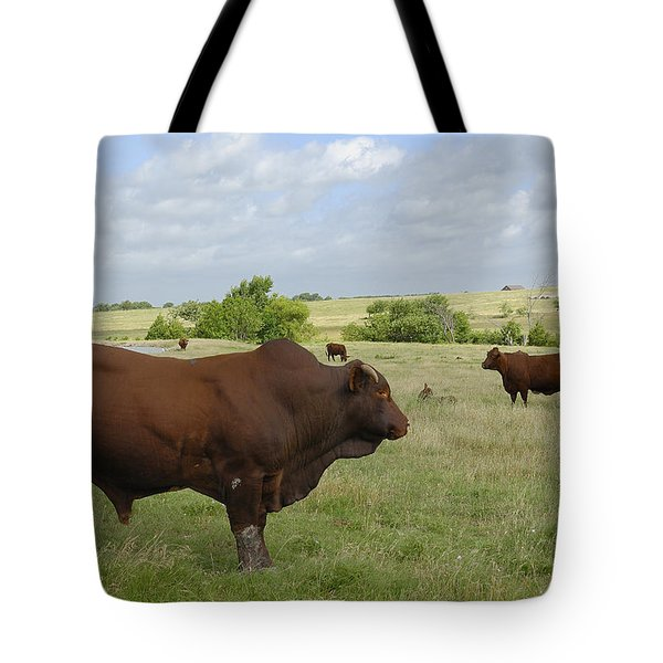 Tote Bag featuring the photograph Bull And Cattle by Charles Beeler