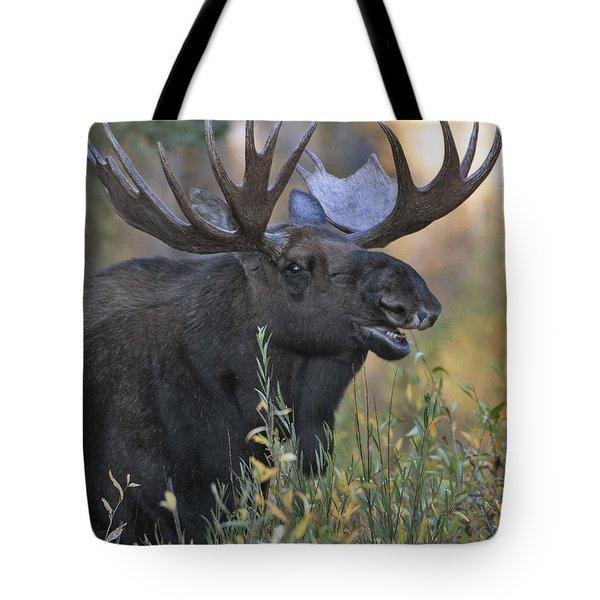 Bull Moose Calling Tote Bag by Gary Langley