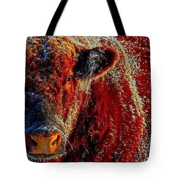 Bull On Ice Tote Bag