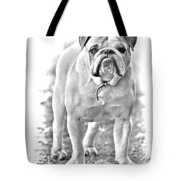 Bulldog Tote Bag by James BO  Insogna
