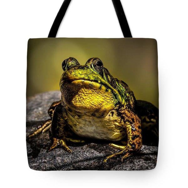 Bullfrog Watching Tote Bag by Bob Orsillo