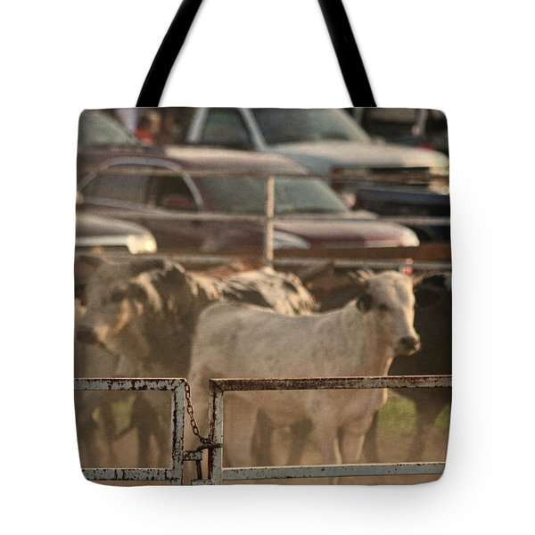 Bulls Tote Bag by Denise Romano