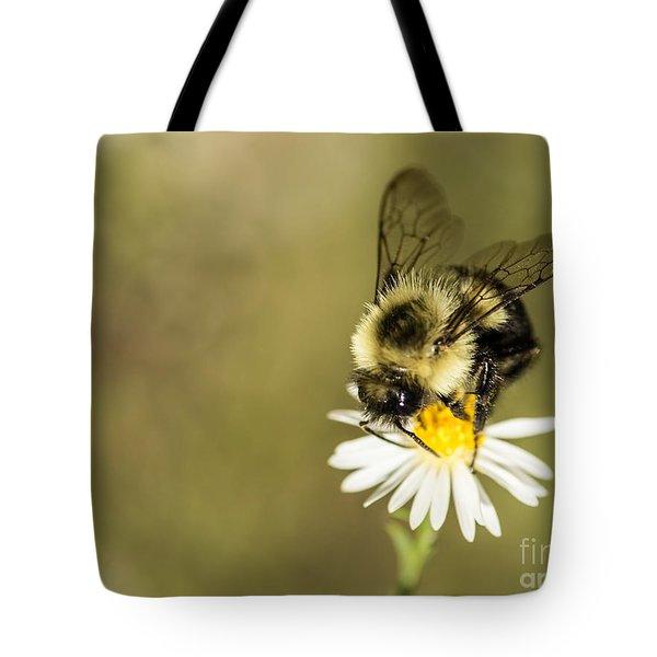 Bumble Bee Macro Tote Bag by Debbie Green