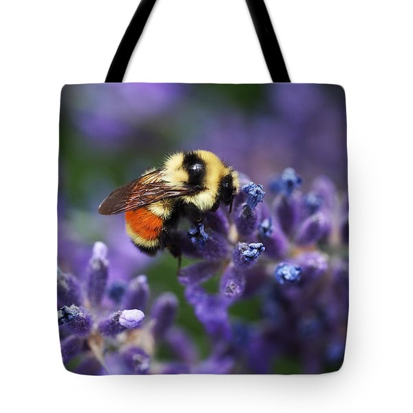 Bumblebee On Lavender Tote Bag by Rona Black